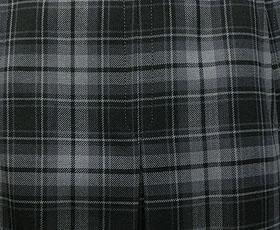 冬スカート柄