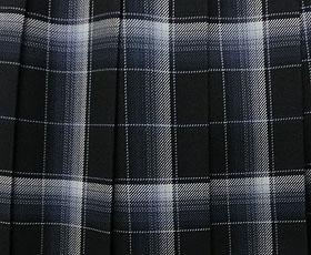 スカート柄