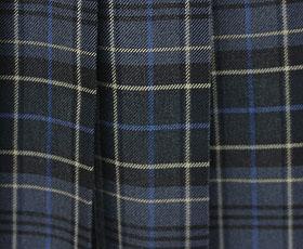 冬スカート